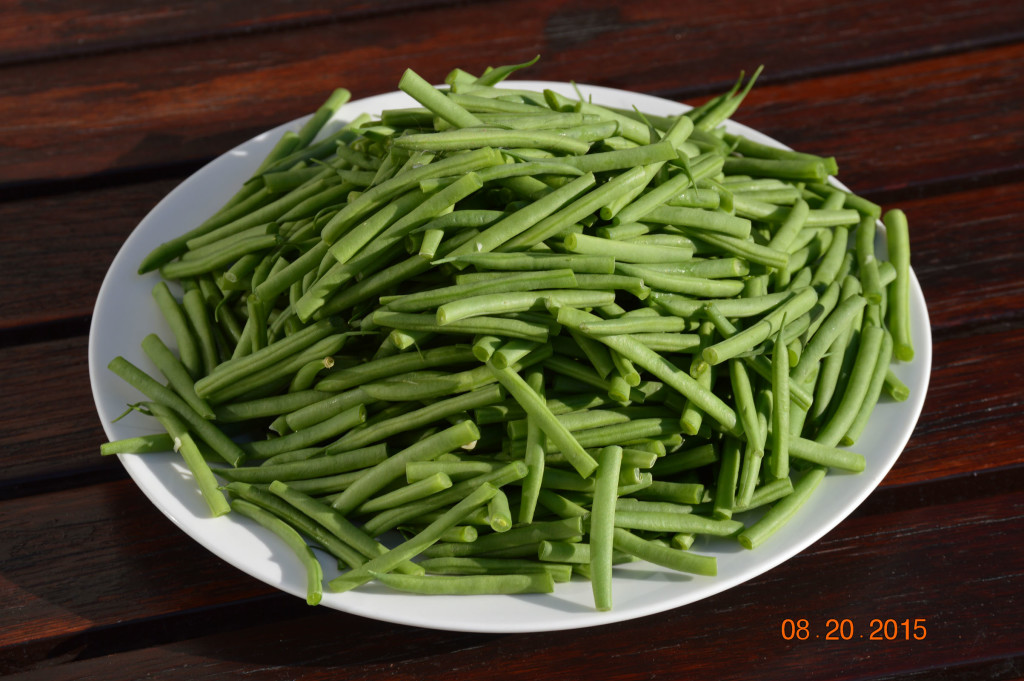 Organic French style green beans from Costco...