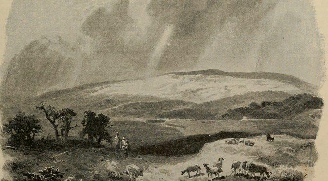 Torah Ecology: Vayehi (Gen. 47:28 – 50:24)