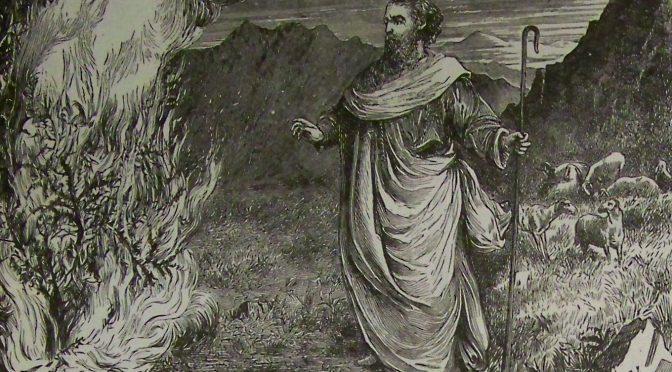 Torah Ecology: Shemot (Exodus 1:1 – 6:1)